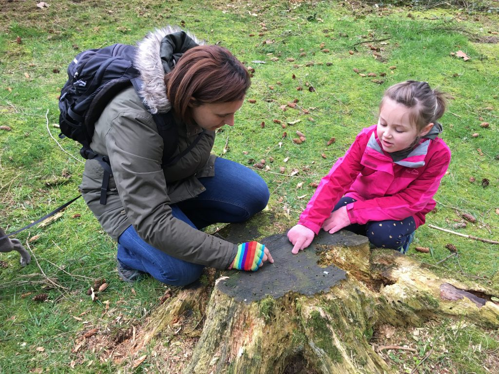 Olivia and Karen crouch by the stump of a tree that was cut down, both pointing to the rings as they count them