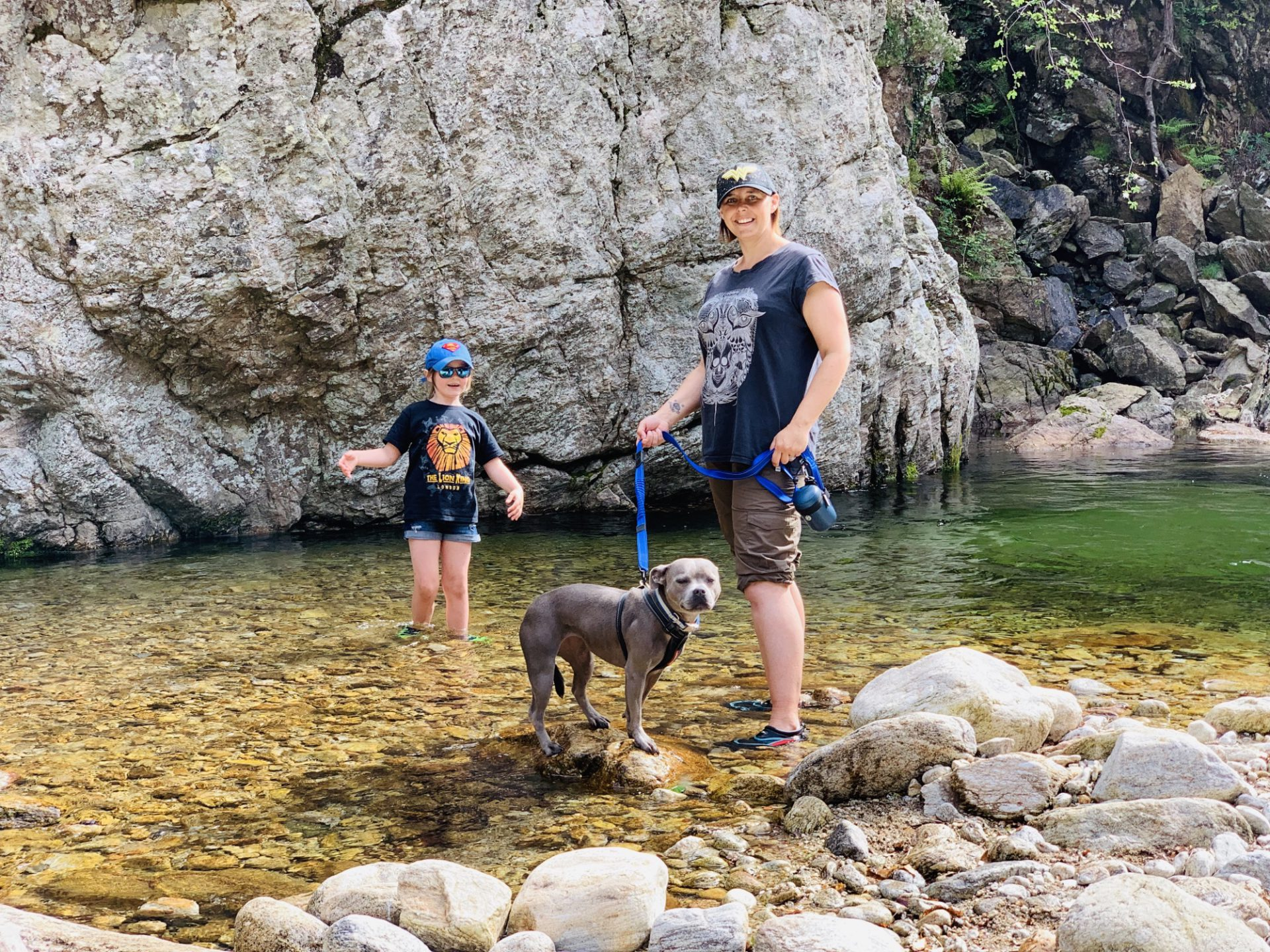 Staffies in France and Italy, and Our Dog Travel Must Haves