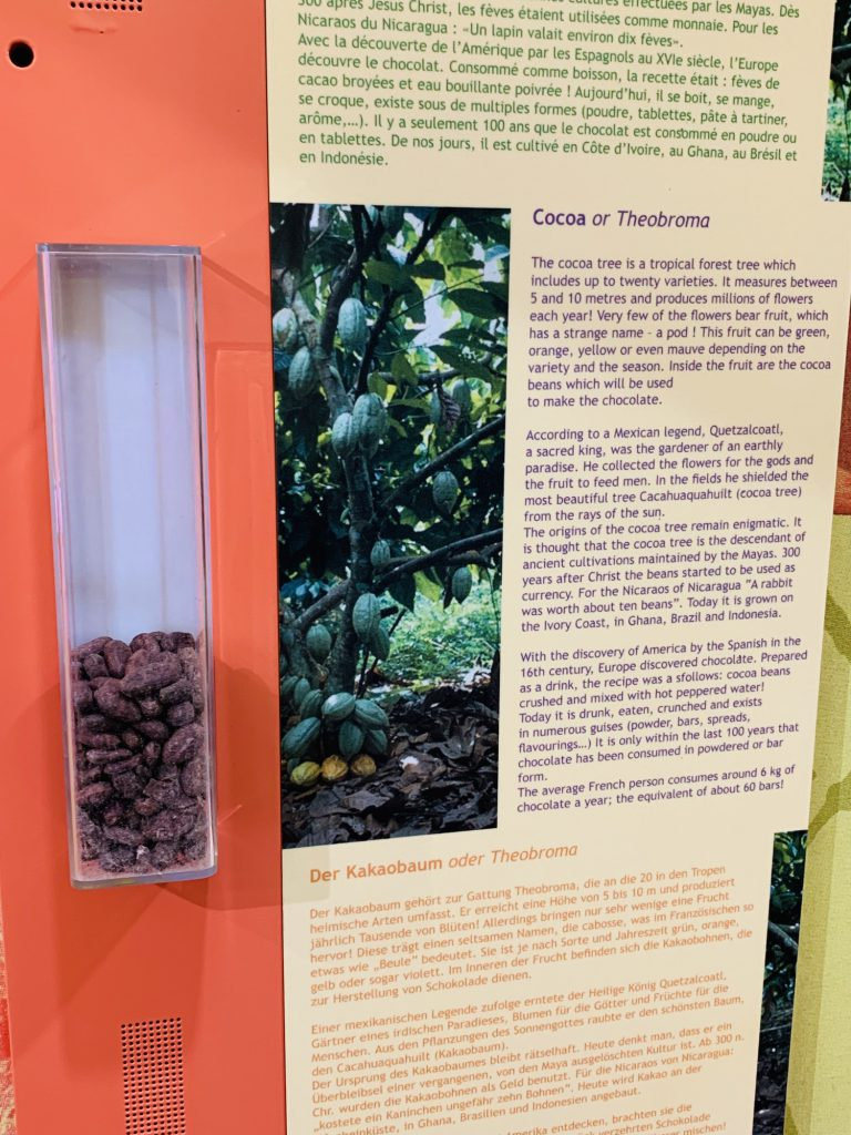 Description and smelling box for cocoa at the Haribo Museum